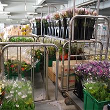 納入先の仕様に加工され出荷を待つ花束